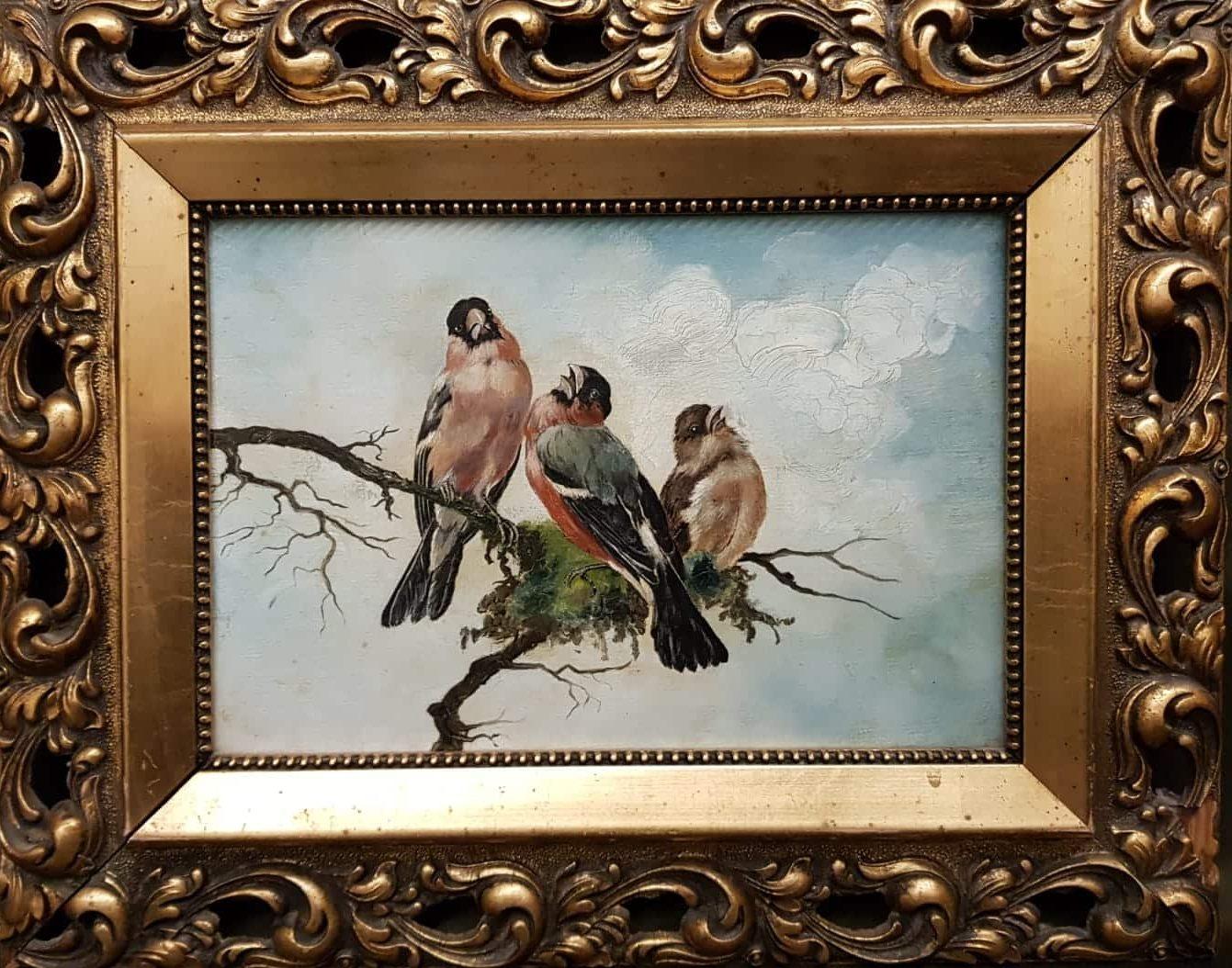 Vogelbildnis (Dompfaff) • Antiquitäten
