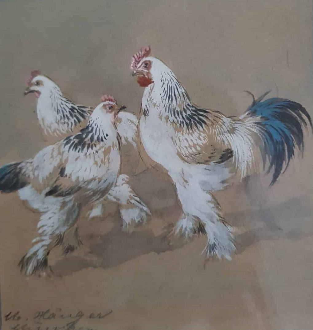 Max Hänger Hühner und Hahn • Antiquitäten
