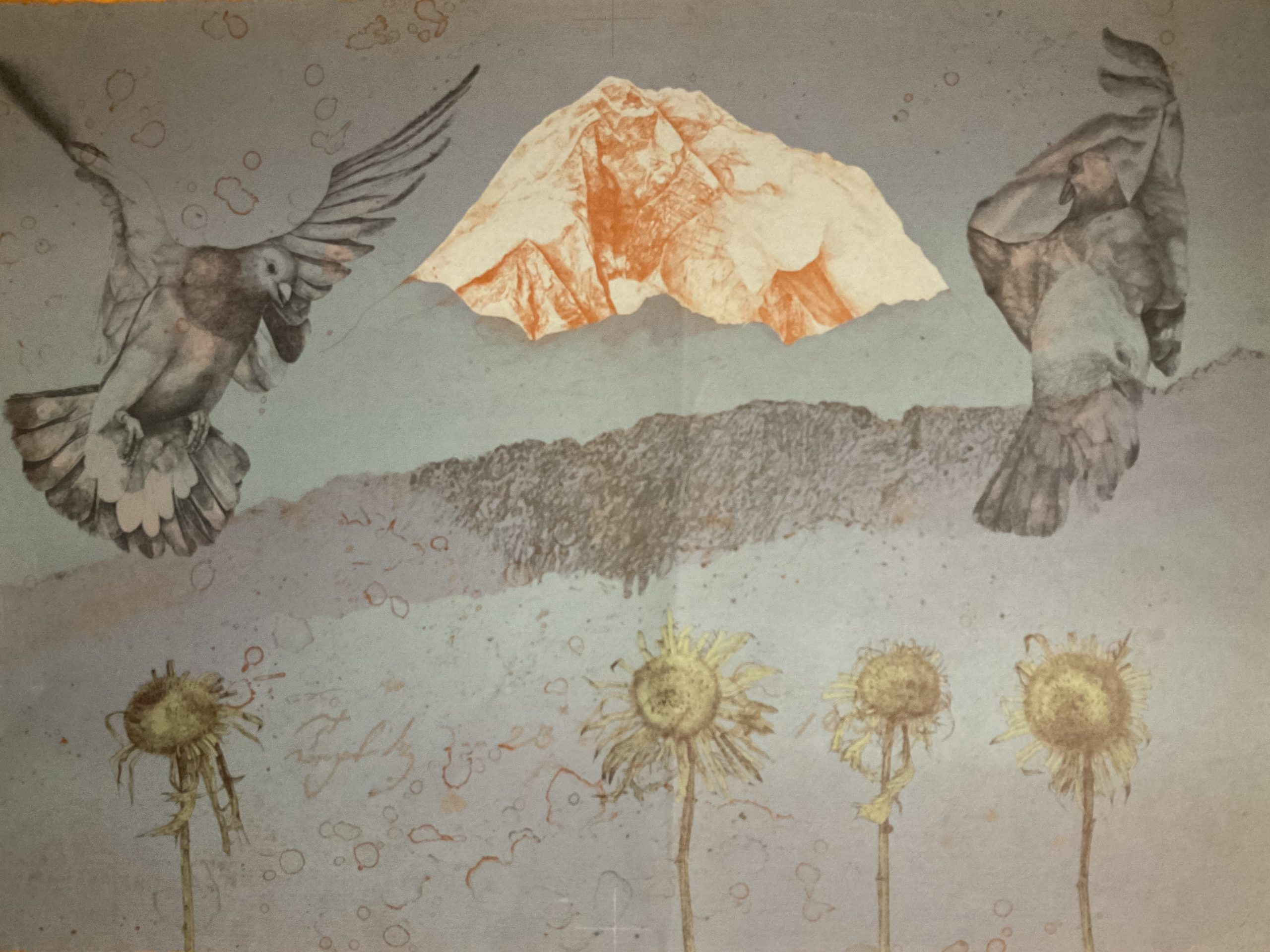 Paul Wunderlich Tauben • Antiquitäten